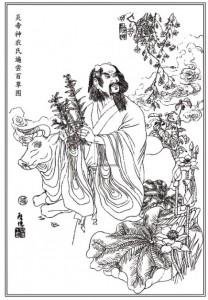 yan-emperor-shen-nong-herbs-bianchang-map-vector_15-12884